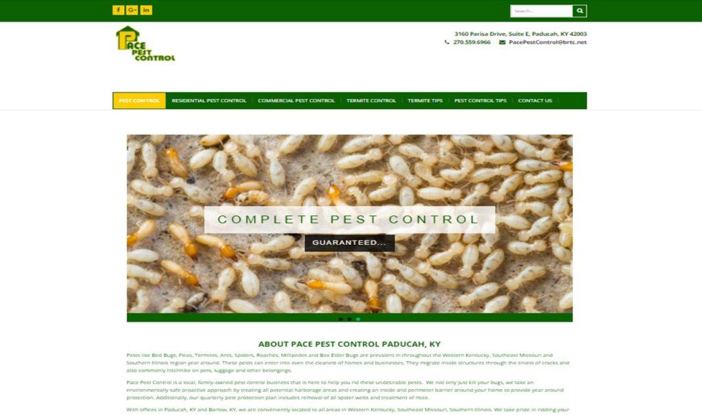 Local Website Design Paducah KY